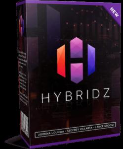 Hybridz product image